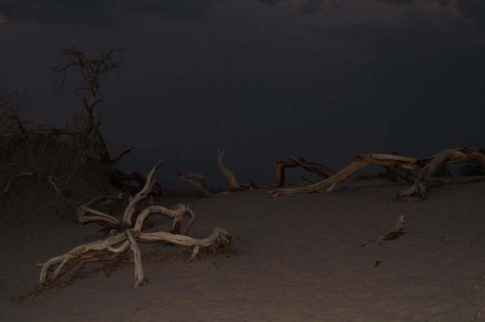 Het was al donker, dat maakte de Mosquito Dunes best mysterieus